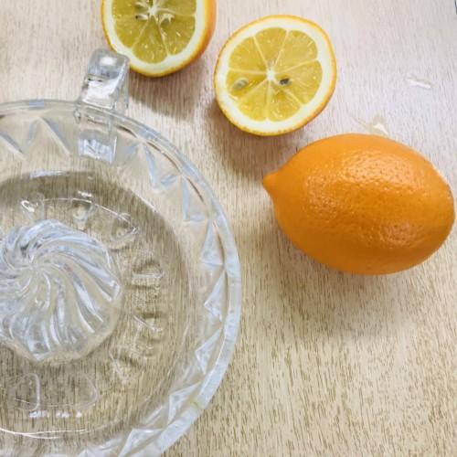 IMG_8999オレンジレモン